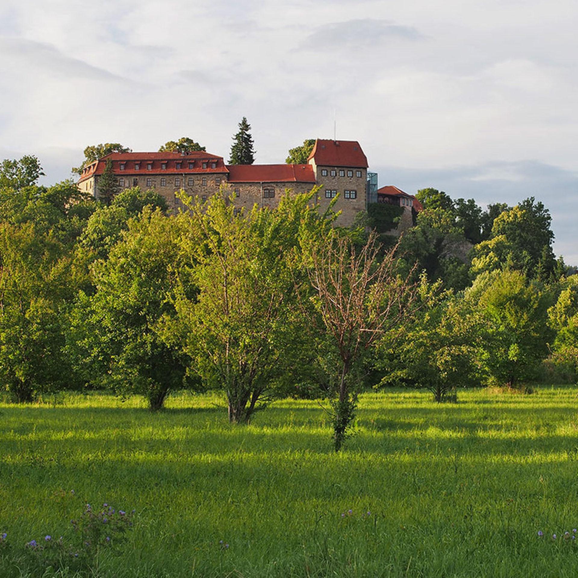 Burg Creuzburg von der Werraaue