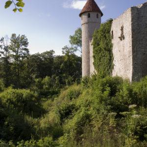 Burgruine Haineck © Welterberegion Wartburg-Hainich/Clemens Scherrers