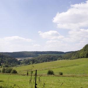 Ritzenhäuser Tal am Haineck-Radweg © Welterberegion Wartburg-Hainich/Clemens Scherrers