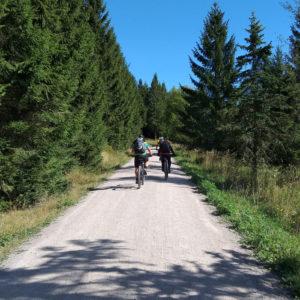 Radfahrer auf dem Rennsteigradweg