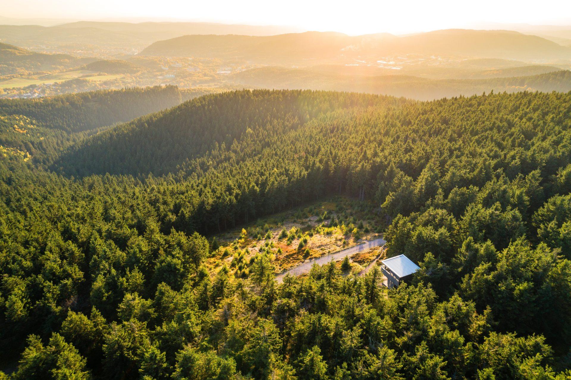 Thüringer Wald © Regionalverbund Thüringer Wald e.V.