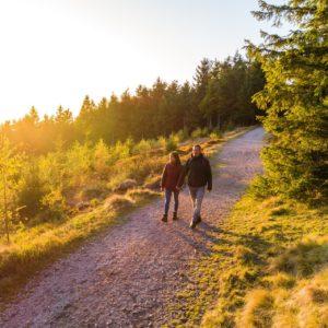 Wandern auf dem Rennsteig © Regionalverbund Thüringer Wald e.V.