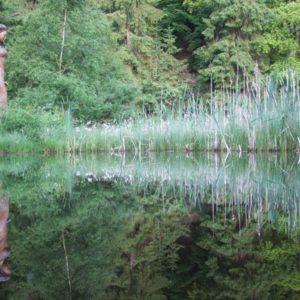 Frau-Holle-Teich mit Holzskulptur