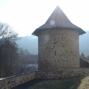 Burgruine in Reurieth