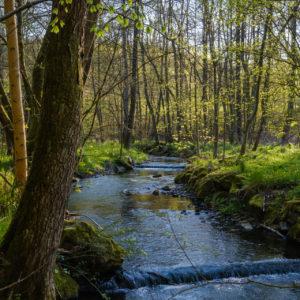 Niemetal, Naturpark Hann. Münden