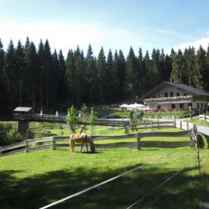 Werraquell-Hütte Fehrenbach @ Werratal Touristik e. V.